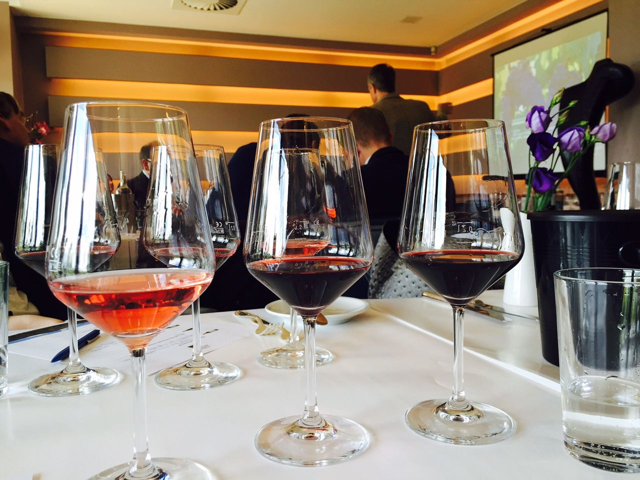 Weinreise mit Somontano