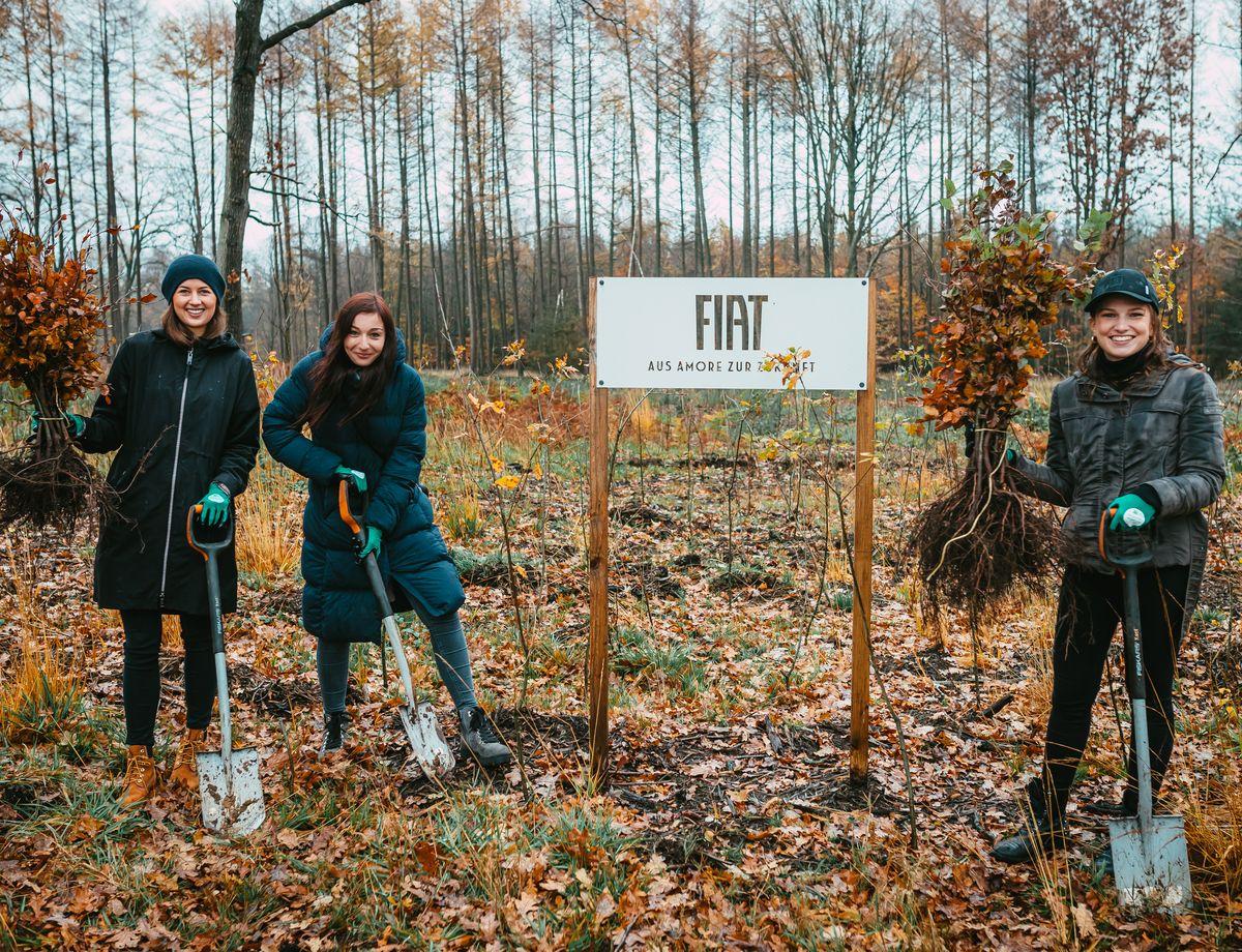 Fiat-Bäume: Aus Amore zur Zukunft
