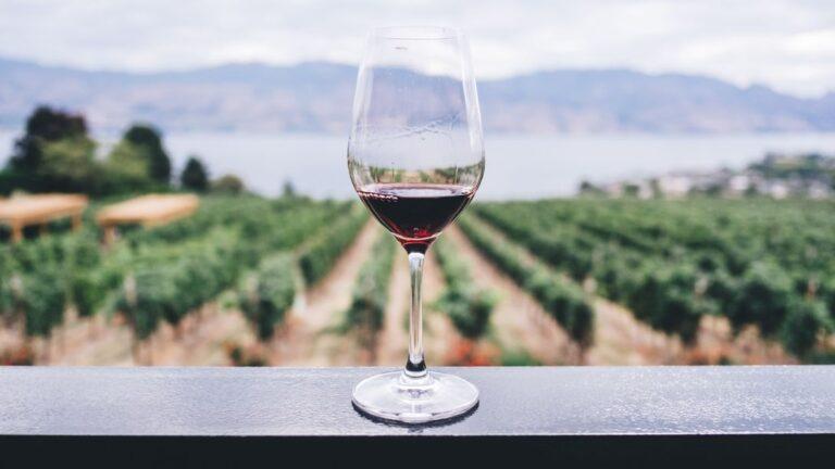 Gelesen: Falstaff Weinguide 2021